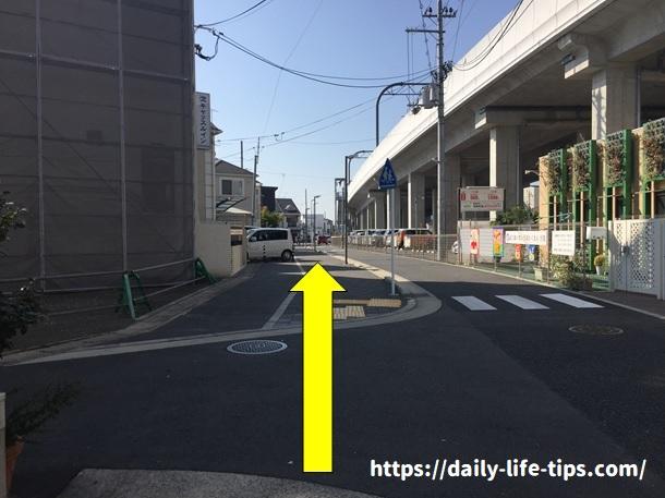 河津桜経路3