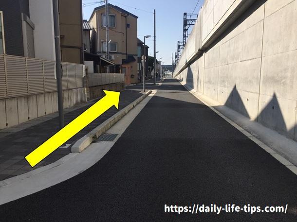 河津桜経路5